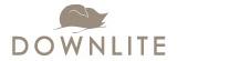Downlite_logo